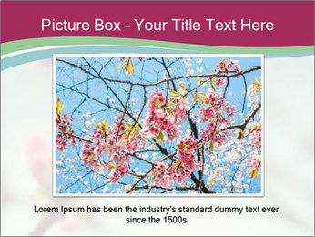 Spring blossom macro PowerPoint Template - Slide 15
