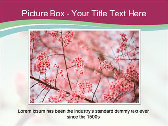 Spring blossom macro PowerPoint Template - Slide 16
