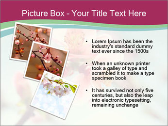 Spring blossom macro PowerPoint Template - Slide 17