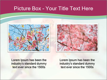 Spring blossom macro PowerPoint Template - Slide 18