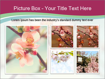 Spring blossom macro PowerPoint Template - Slide 19