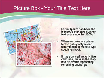 Spring blossom macro PowerPoint Template - Slide 20