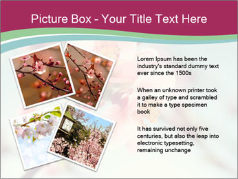 Spring blossom macro PowerPoint Template - Slide 23