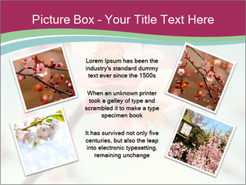 Spring blossom macro PowerPoint Template - Slide 24