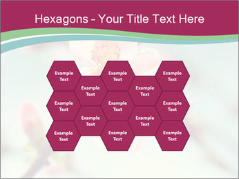 Spring blossom macro PowerPoint Template - Slide 44