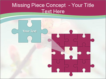 Spring blossom macro PowerPoint Template - Slide 45