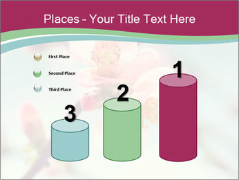 Spring blossom macro PowerPoint Template - Slide 65