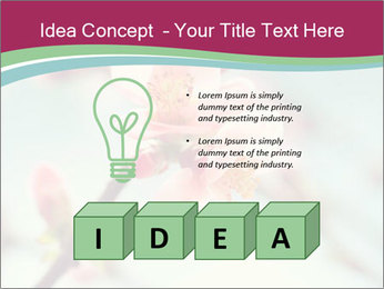 Spring blossom macro PowerPoint Template - Slide 80