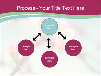 Spring blossom macro PowerPoint Template - Slide 91