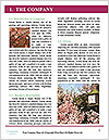0000094059 Word Template - Page 3