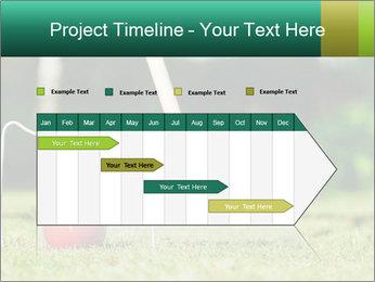 Croquet in the garden PowerPoint Templates - Slide 25