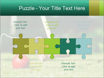 Croquet in the garden PowerPoint Templates - Slide 41