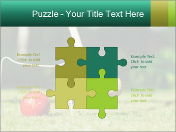 Croquet in the garden PowerPoint Templates - Slide 43
