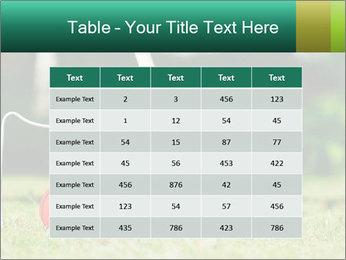 Croquet in the garden PowerPoint Templates - Slide 55