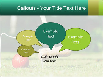 Croquet in the garden PowerPoint Templates - Slide 73