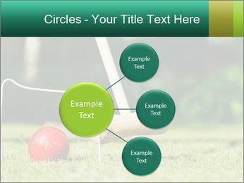Croquet in the garden PowerPoint Templates - Slide 79