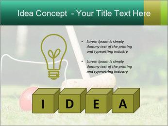 Croquet in the garden PowerPoint Templates - Slide 80