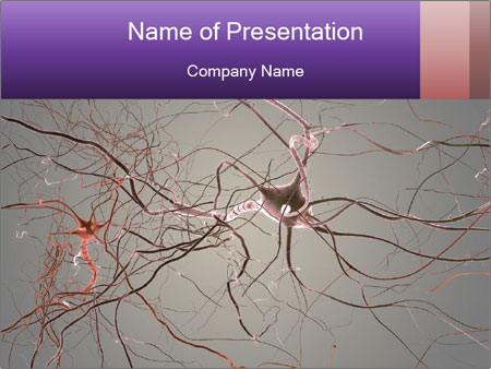 Neuron cells PowerPoint Template