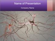 Neuron cells PowerPoint Templates