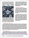 0000094062 Word Templates - Page 4
