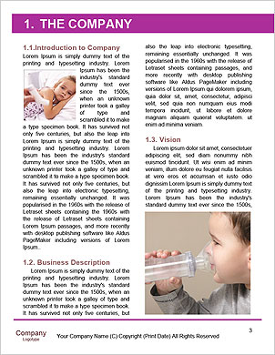 0000094064 Word Template - Page 3