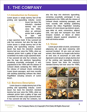 0000094079 Word Template - Page 3