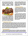 0000094079 Word Templates - Page 4