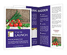 0000094083 Brochure Templates
