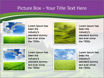 Tea Plantations PowerPoint Template - Slide 14