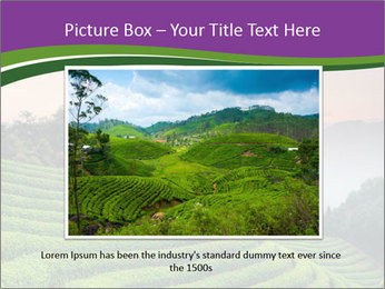 Tea Plantations PowerPoint Templates - Slide 16