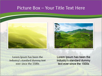 Tea Plantations PowerPoint Templates - Slide 18
