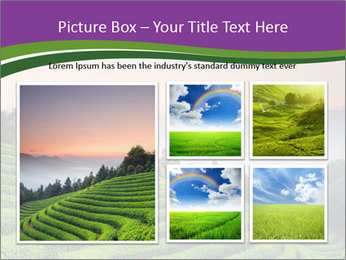 Tea Plantations PowerPoint Templates - Slide 19