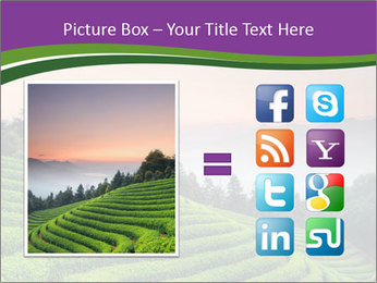 Tea Plantations PowerPoint Templates - Slide 21