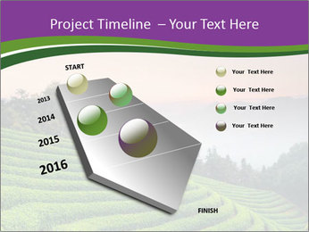 Tea Plantations PowerPoint Templates - Slide 26