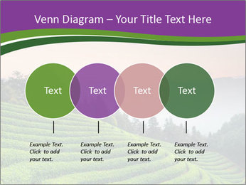 Tea Plantations PowerPoint Templates - Slide 32