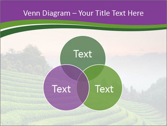 Tea Plantations PowerPoint Templates - Slide 33