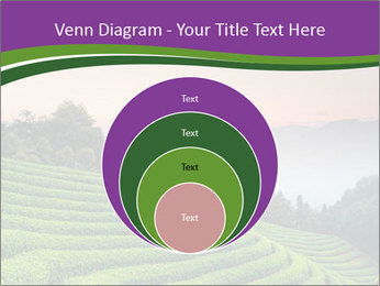 Tea Plantations PowerPoint Templates - Slide 34