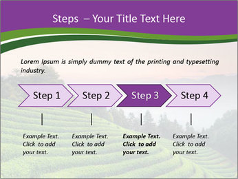 Tea Plantations PowerPoint Templates - Slide 4