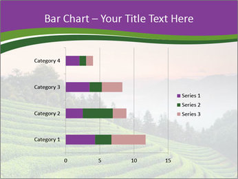 Tea Plantations PowerPoint Templates - Slide 52