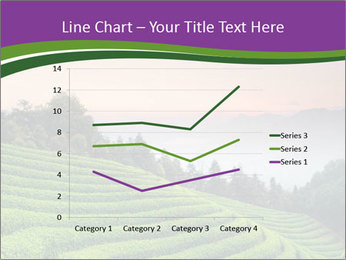 Tea Plantations PowerPoint Templates - Slide 54