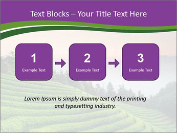 Tea Plantations PowerPoint Templates - Slide 71