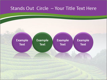 Tea Plantations PowerPoint Templates - Slide 76