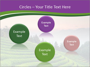 Tea Plantations PowerPoint Templates - Slide 77