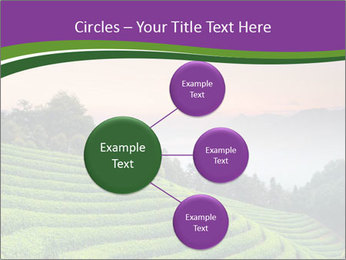 Tea Plantations PowerPoint Templates - Slide 79