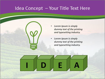Tea Plantations PowerPoint Templates - Slide 80