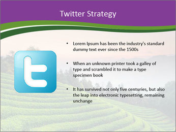 Tea Plantations PowerPoint Templates - Slide 9