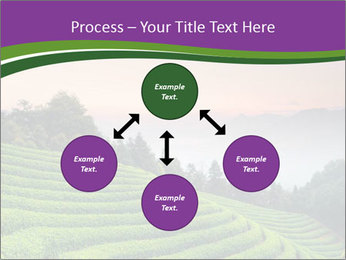 Tea Plantations PowerPoint Templates - Slide 91