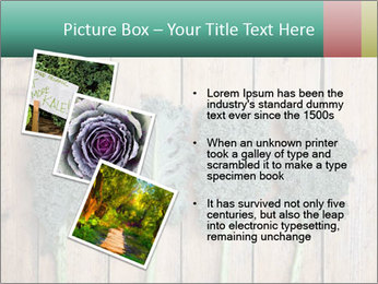 0000094094 PowerPoint Templates - Slide 17