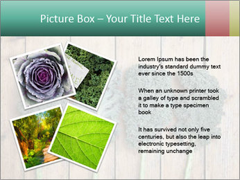 0000094094 PowerPoint Templates - Slide 23