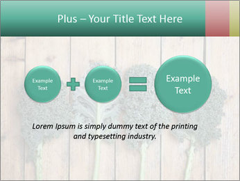 0000094094 PowerPoint Templates - Slide 75